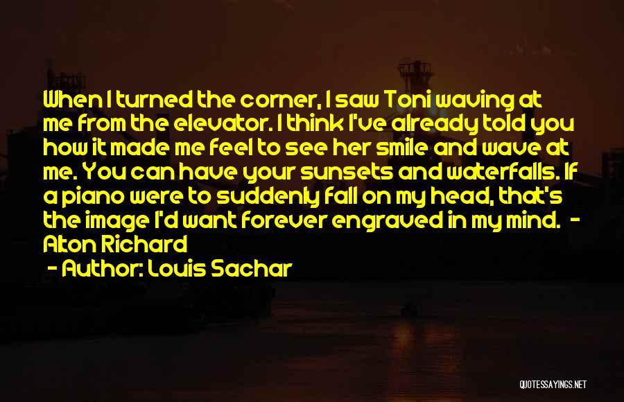 How I Feel When I See You Quotes By Louis Sachar