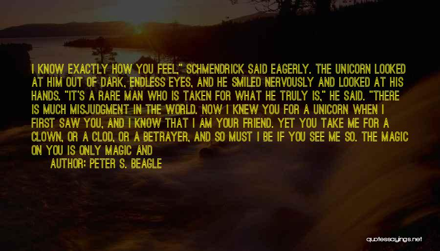 How I Feel When I See You Quotes By Peter S. Beagle