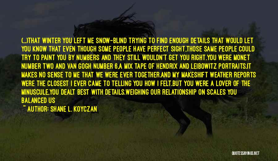 How I Feel When I See You Quotes By Shane L. Koyczan