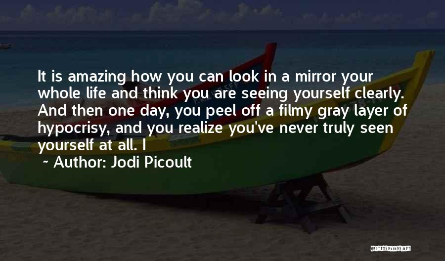 How Life Is Amazing Quotes By Jodi Picoult