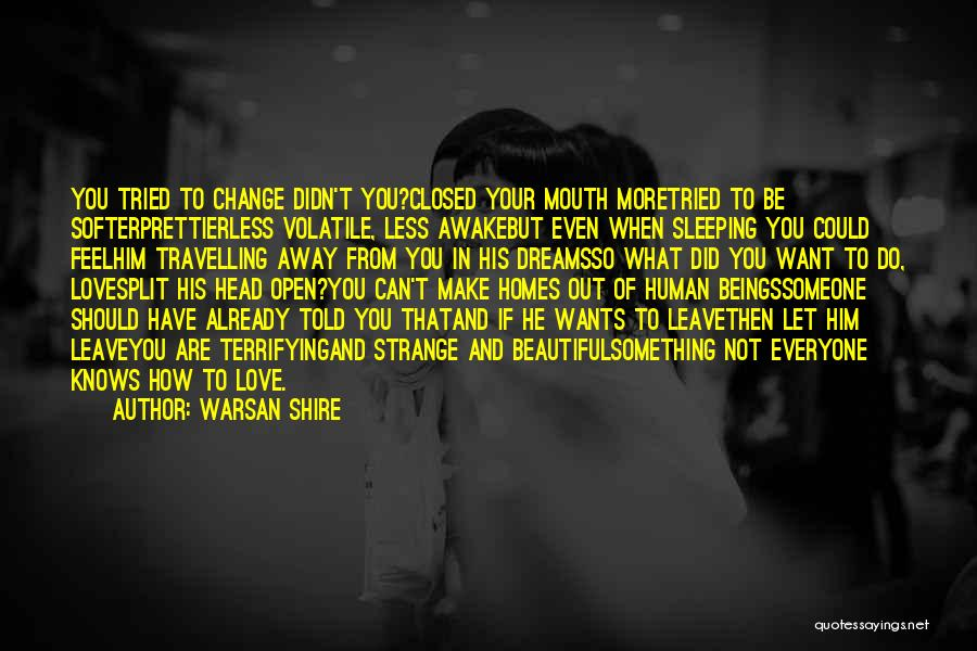 How Love Can Change You Quotes By Warsan Shire
