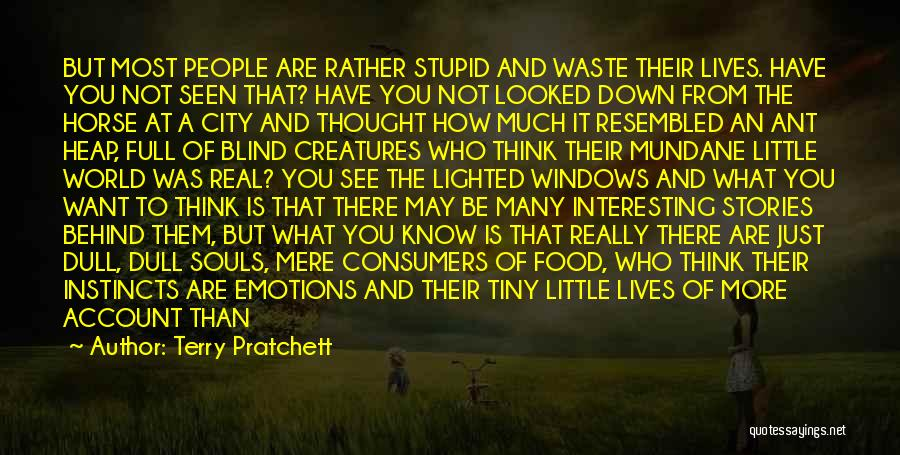 How Much You Like Her Quotes By Terry Pratchett
