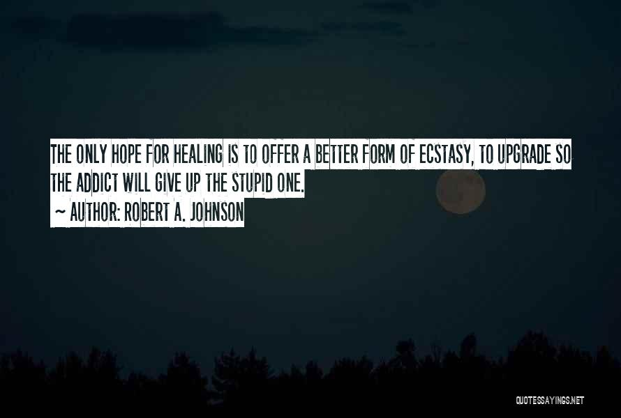 How Not To Give Up Hope Quotes By Robert A. Johnson