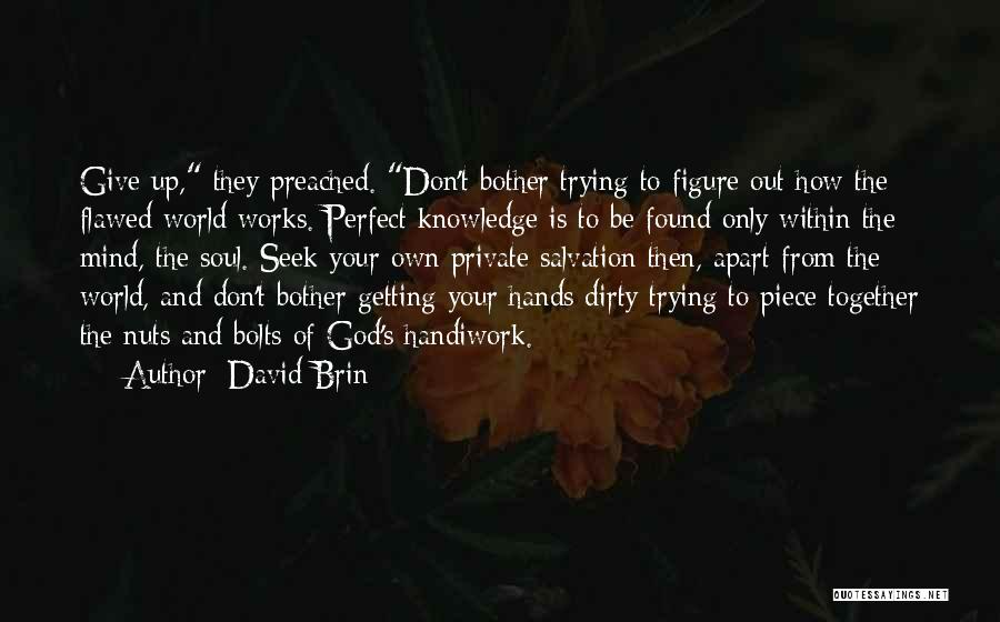 How The Mind Works Quotes By David Brin
