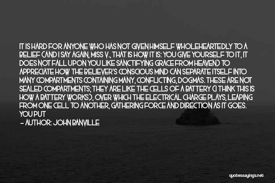 How The Mind Works Quotes By John Banville