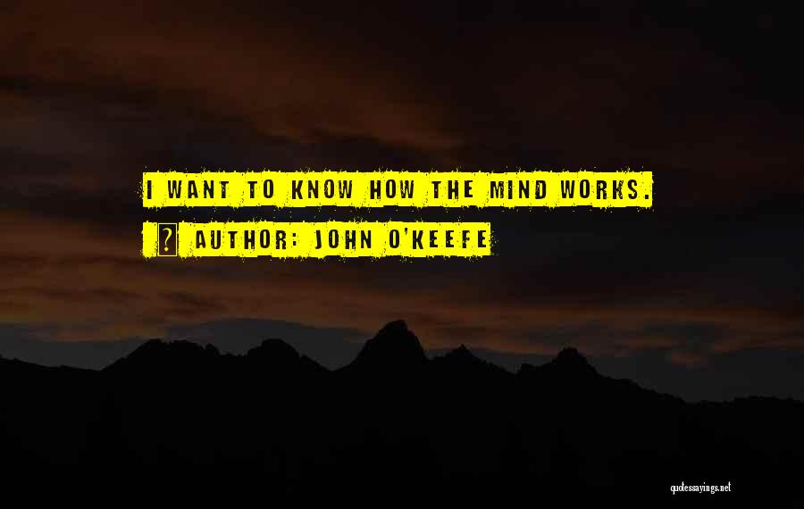 How The Mind Works Quotes By John O'Keefe