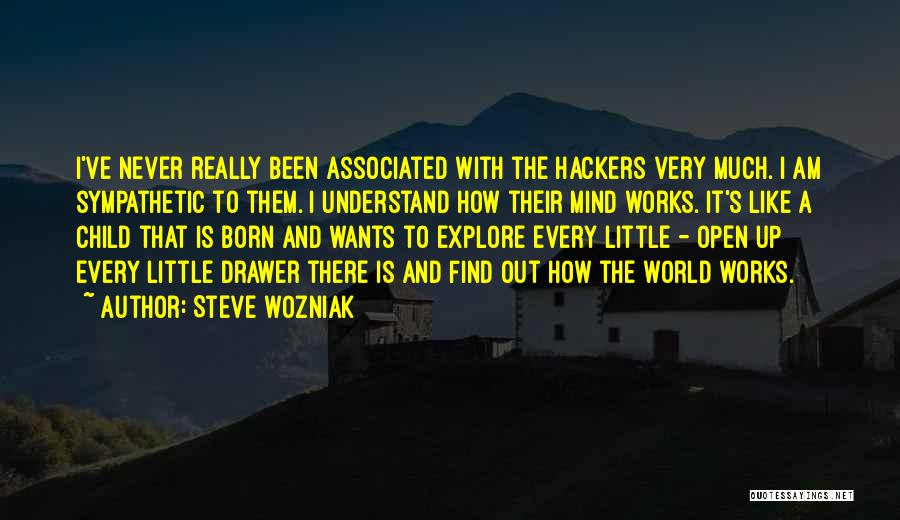 How The Mind Works Quotes By Steve Wozniak