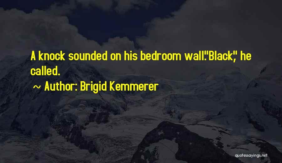 How To Do Your Own Wall Quotes By Brigid Kemmerer