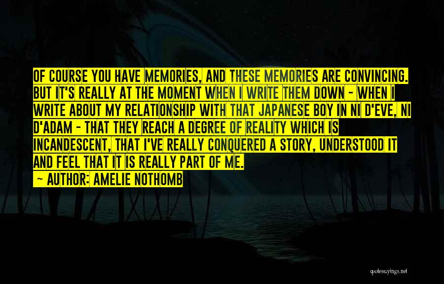 How You Feel About A Boy Quotes By Amelie Nothomb
