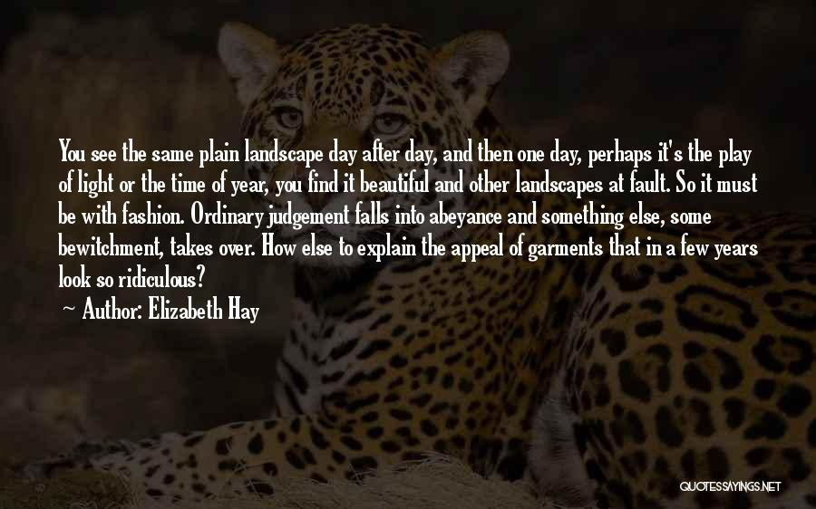 How You See Quotes By Elizabeth Hay