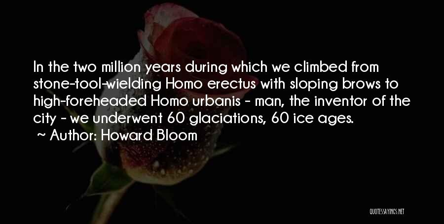 Howard Bloom Quotes 1353145