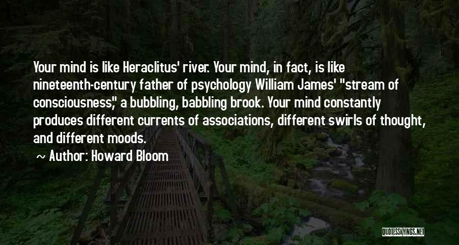 Howard Bloom Quotes 1391927