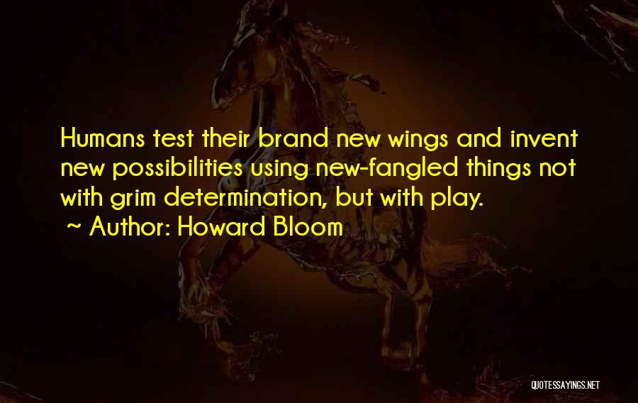 Howard Bloom Quotes 653564