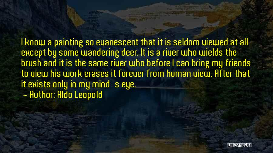 Human After All Quotes By Aldo Leopold