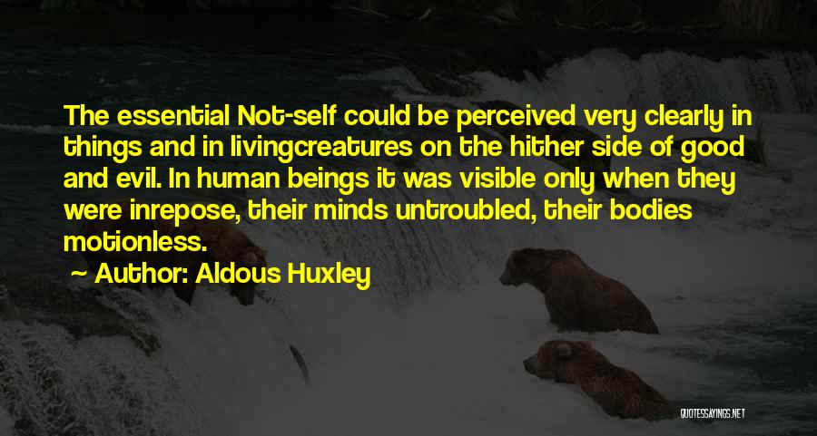 Human Perception Quotes By Aldous Huxley