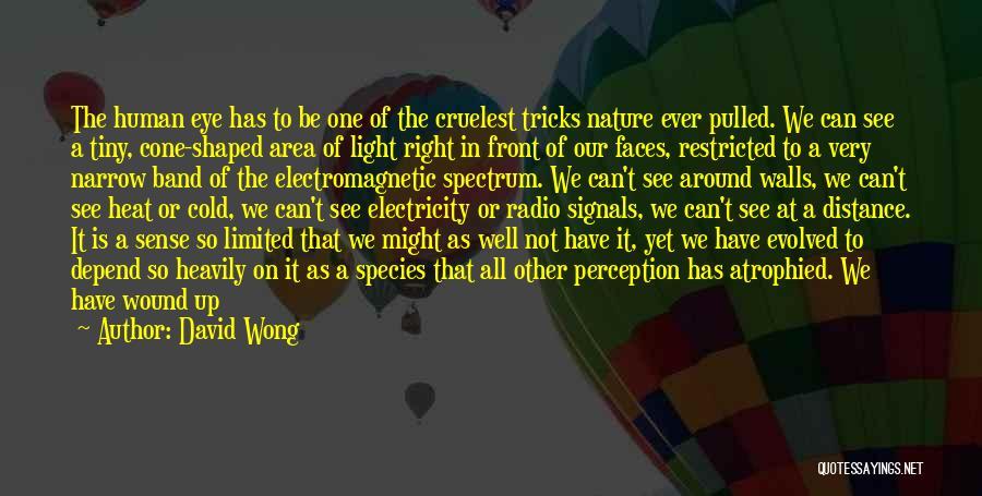 Human Perception Quotes By David Wong
