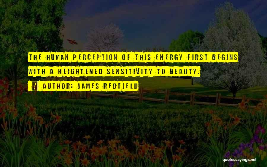 Human Perception Quotes By James Redfield
