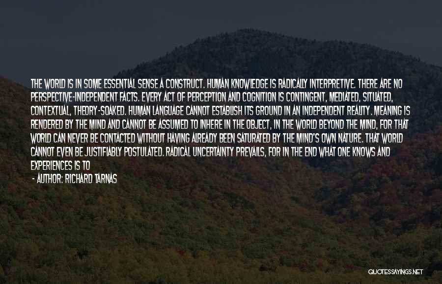Human Perception Quotes By Richard Tarnas