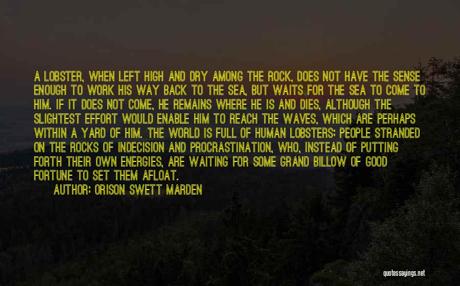Human Remains Quotes By Orison Swett Marden