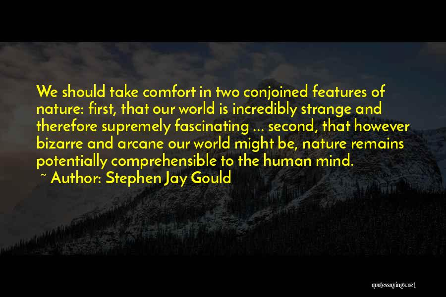 Human Remains Quotes By Stephen Jay Gould