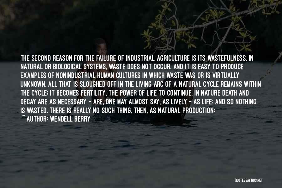 Human Remains Quotes By Wendell Berry