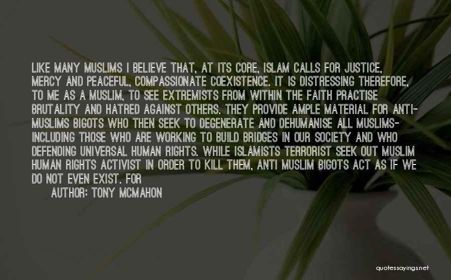 Human Rights Activist Quotes By Tony McMahon