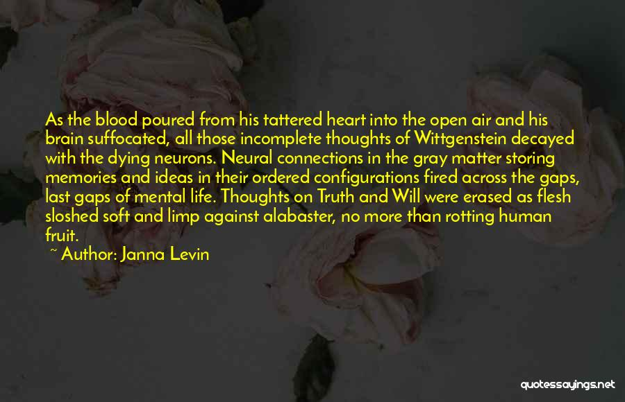 Human Thoughts Quotes By Janna Levin