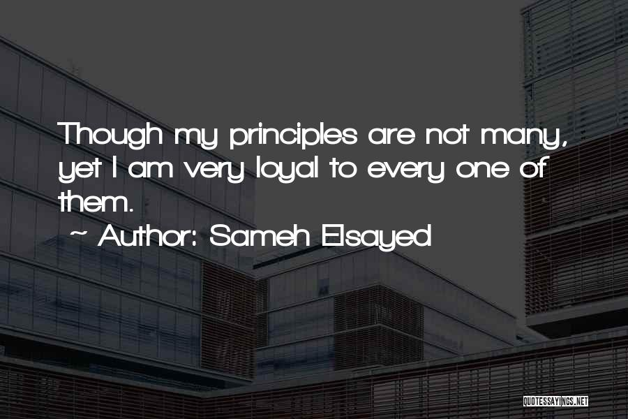 Human Values Quotes By Sameh Elsayed