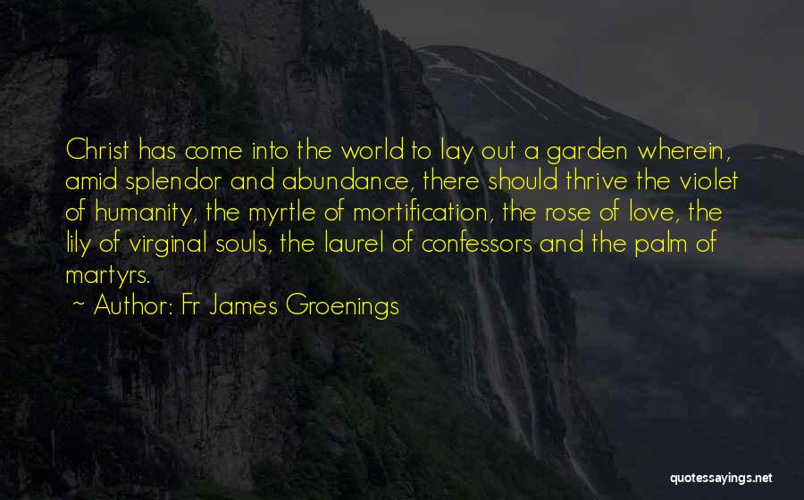 Humanity And Love Quotes By Fr James Groenings
