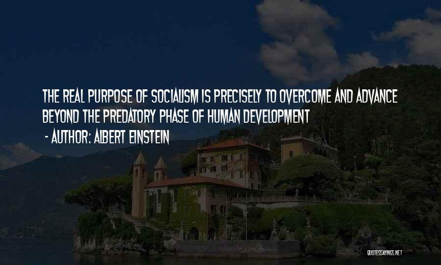 Humanity And Society Quotes By Albert Einstein