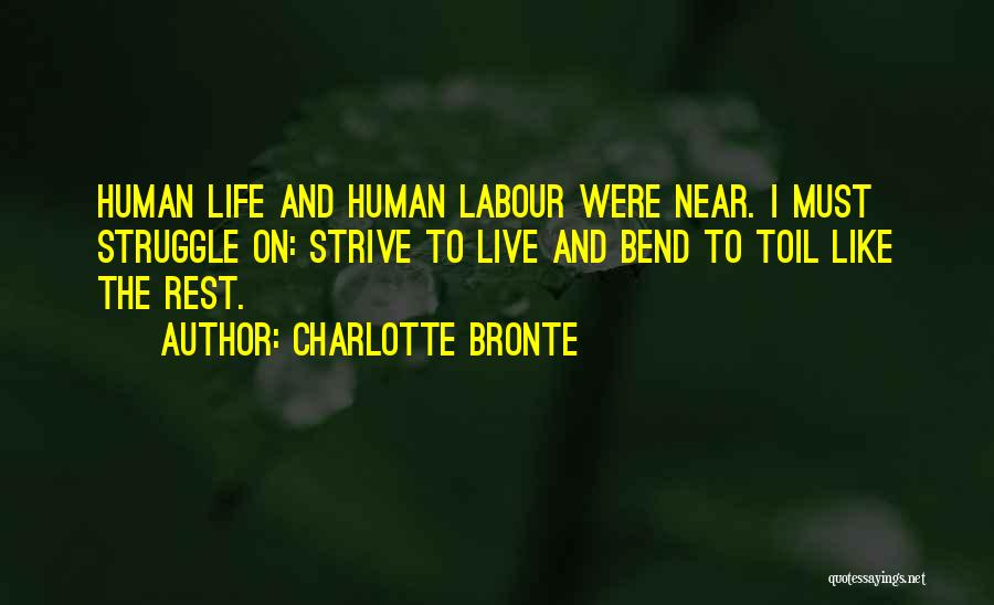 Humanity And Society Quotes By Charlotte Bronte