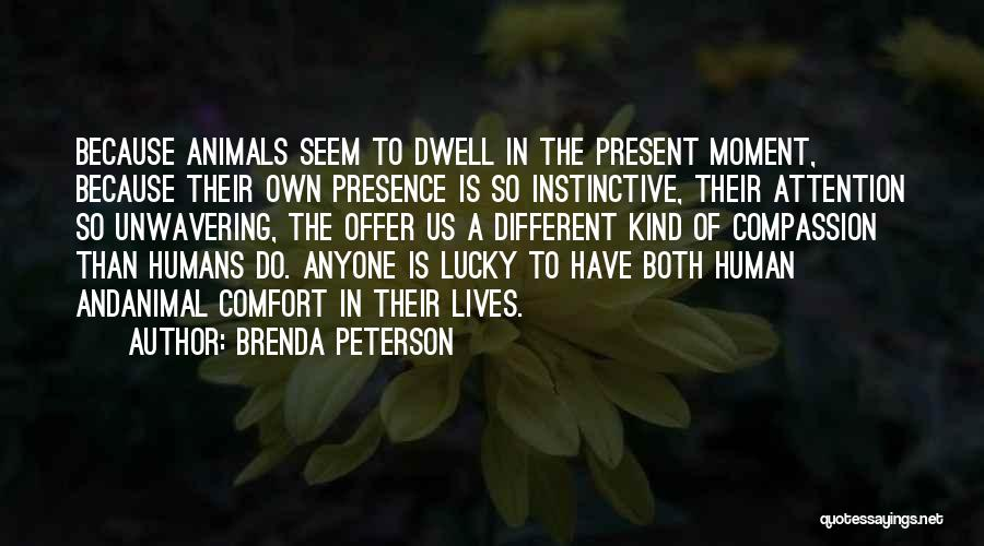 Humans And Animals Quotes By Brenda Peterson