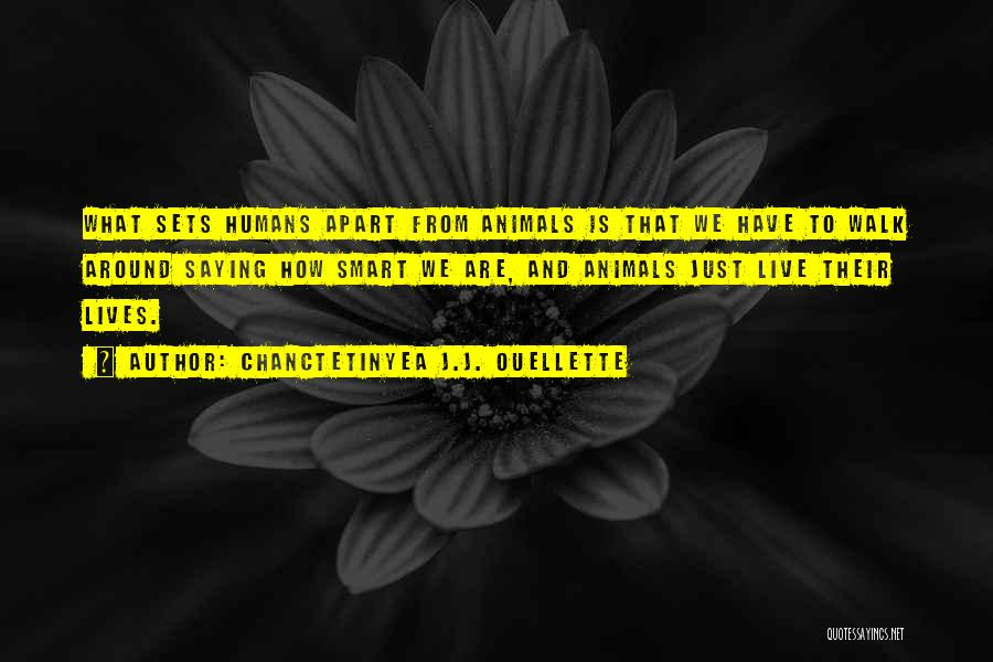 Humans And Animals Quotes By Chanctetinyea J.J. Ouellette