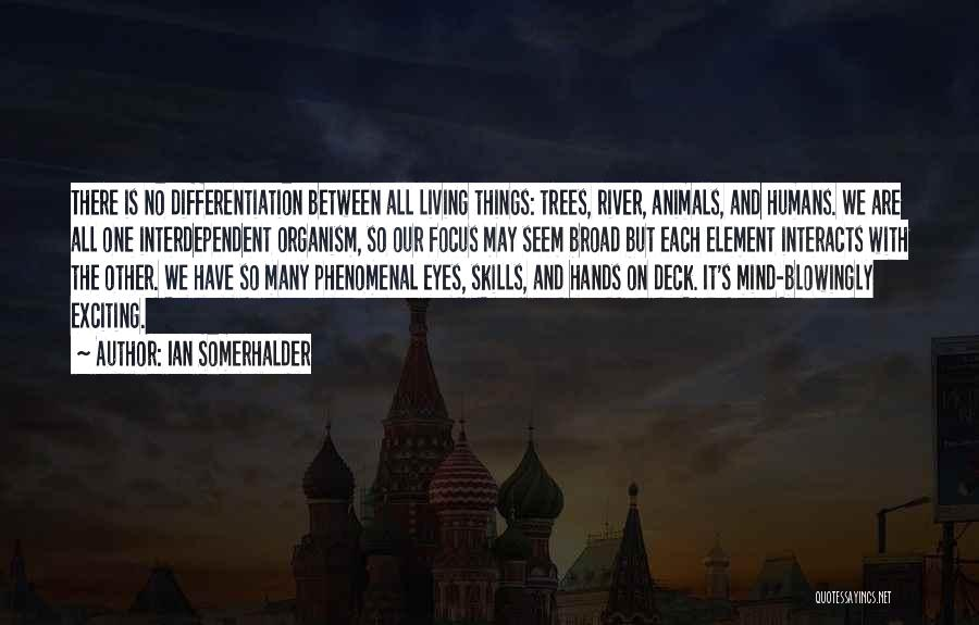 Humans And Animals Quotes By Ian Somerhalder