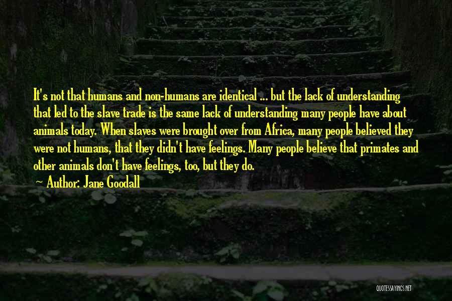 Humans Are Animals Quotes By Jane Goodall