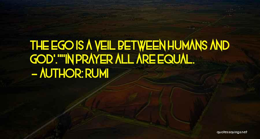Humans Are Not Equal Quotes By Rumi