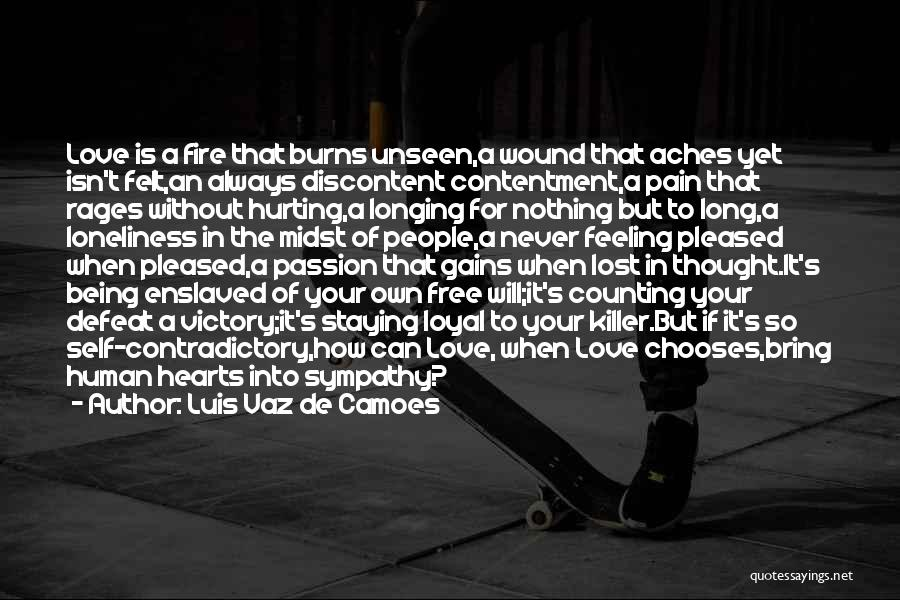 Hurting Someone You Love And Being Sorry Quotes By Luis Vaz De Camoes