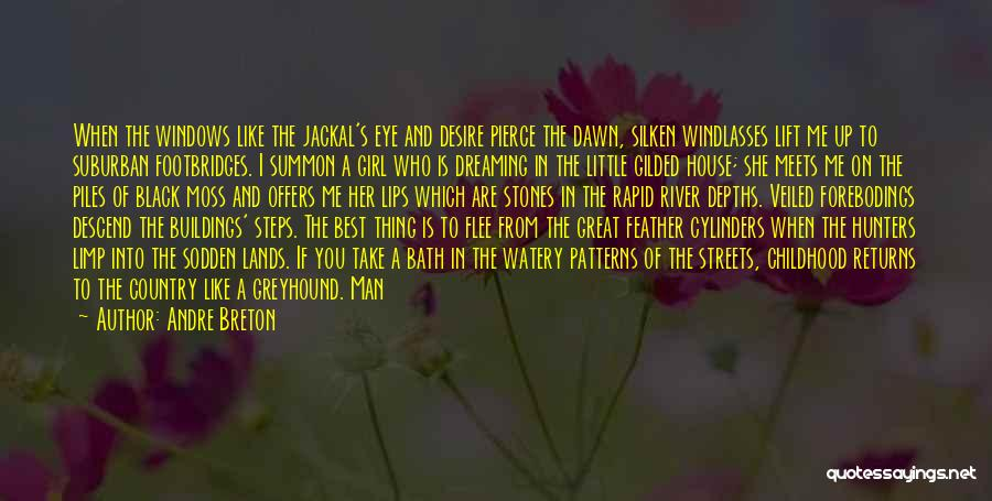 I A Country Girl Quotes By Andre Breton