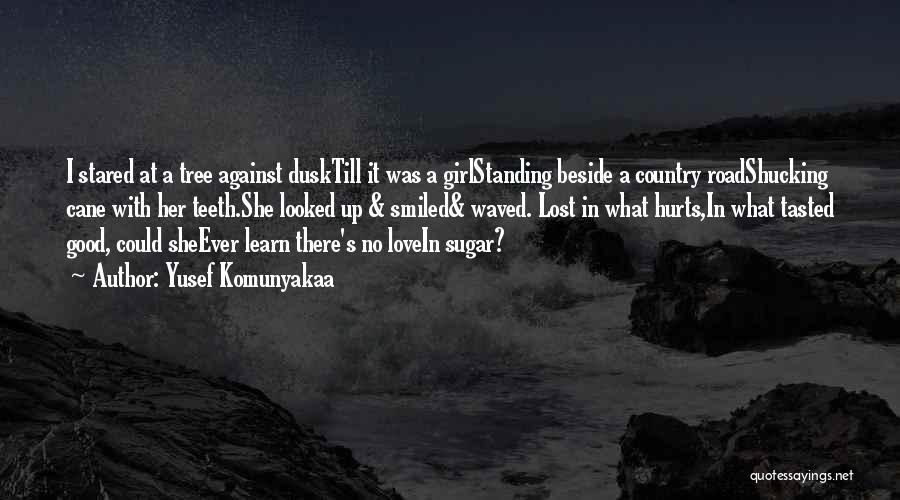 I A Country Girl Quotes By Yusef Komunyakaa