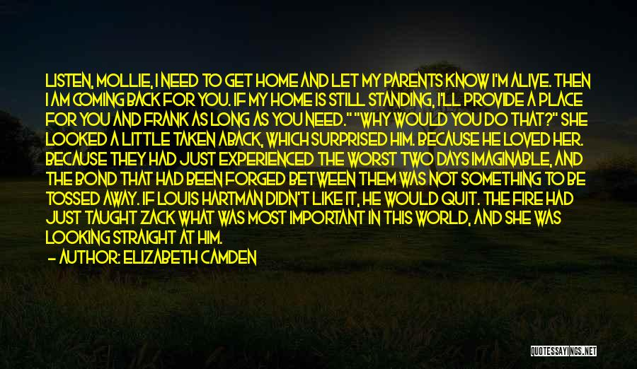 I Am Looking Quotes By Elizabeth Camden