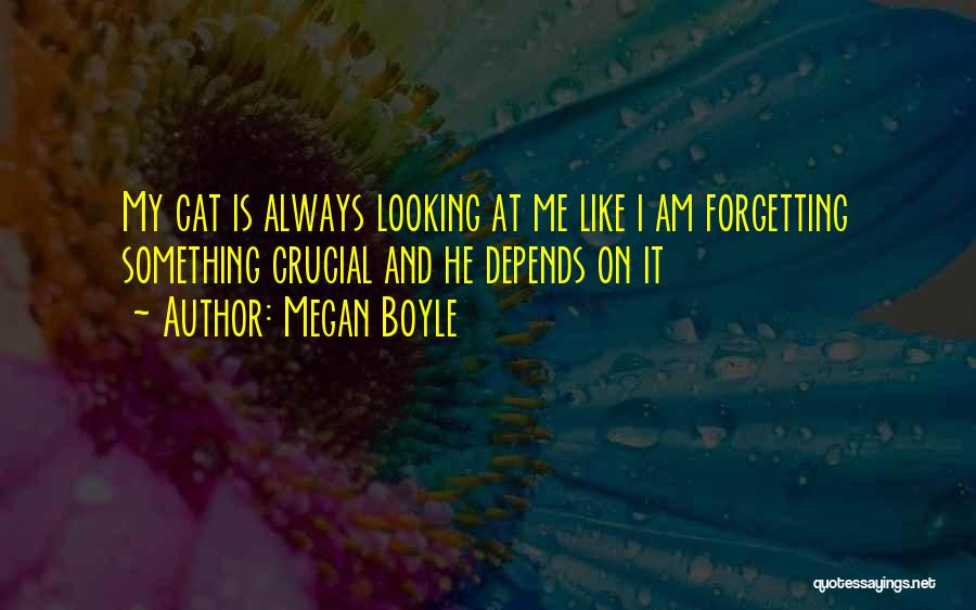 I Am Looking Quotes By Megan Boyle