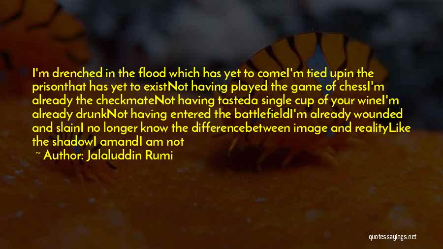 I Am Not A Game Quotes By Jalaluddin Rumi