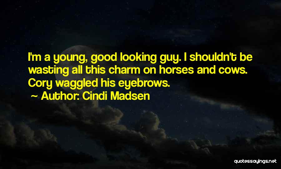 I Am Not A Good Looking Guy Quotes By Cindi Madsen