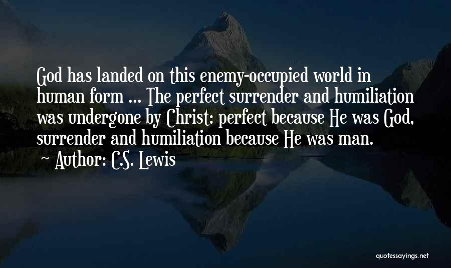 I Am Not A Perfect Man Quotes By C.S. Lewis