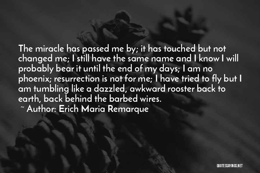 I Am Not Changed Quotes By Erich Maria Remarque