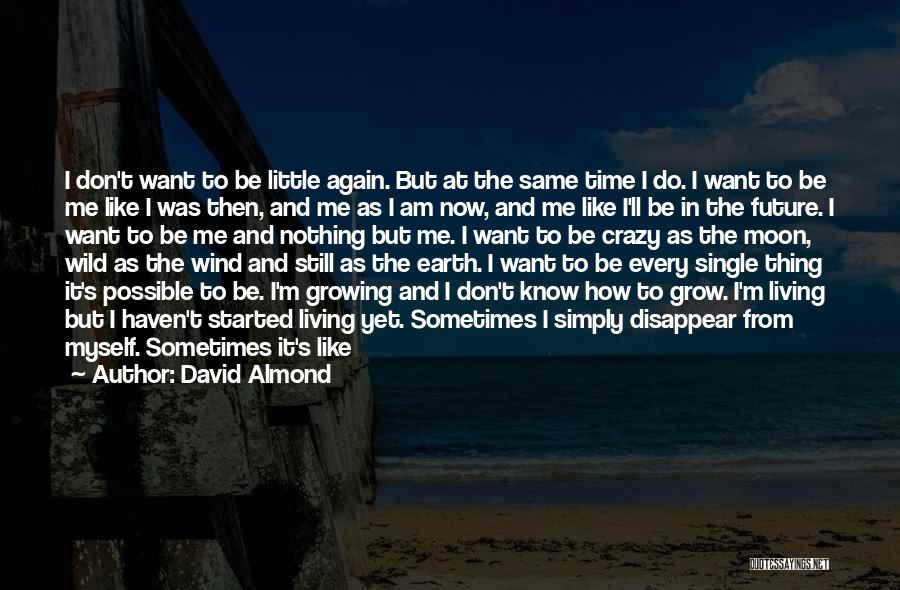 I Am Not Crazy Quotes By David Almond