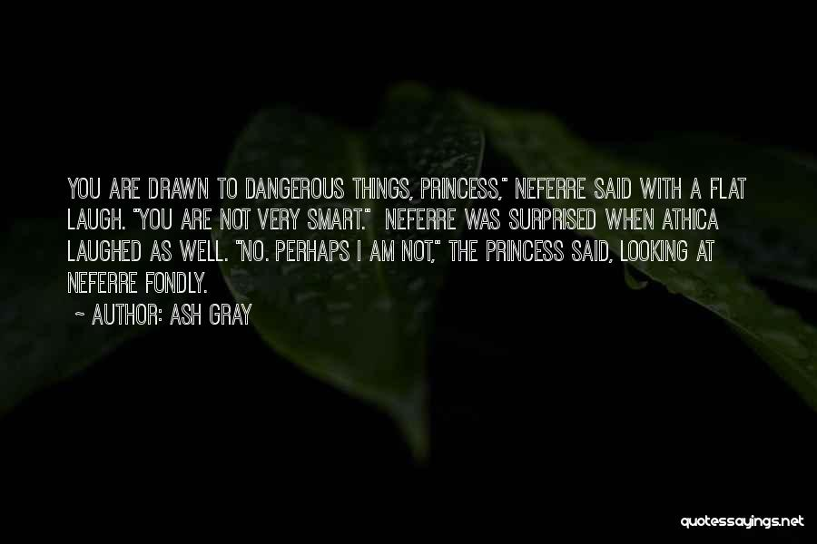I Am Not Princess Quotes By Ash Gray