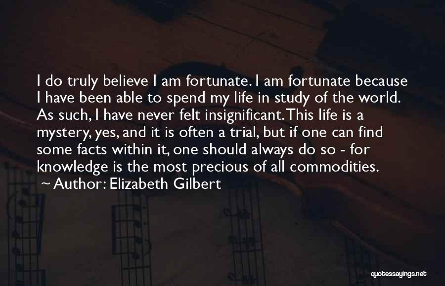 I Am So Fortunate Quotes By Elizabeth Gilbert
