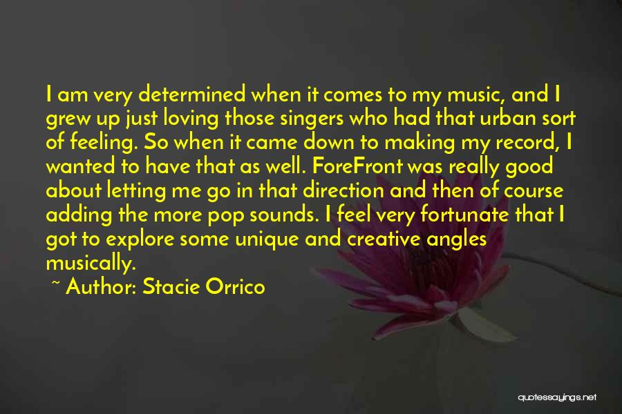 I Am So Fortunate Quotes By Stacie Orrico