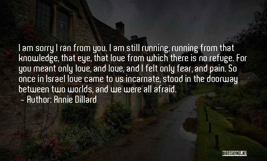 I Am Sorry Love Quotes By Annie Dillard